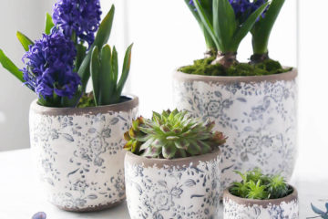 delightful blue indoor plant pots featured image