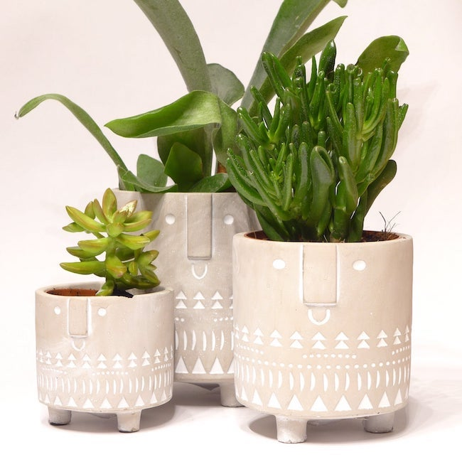 concrete face planters in bloom in habitat etsy