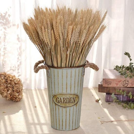 dried flowers and grasses decorative trend iclosam store amazon uk